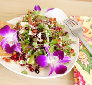 Micro Greens Salad with Quinoa, Pancetta and Pomegranate