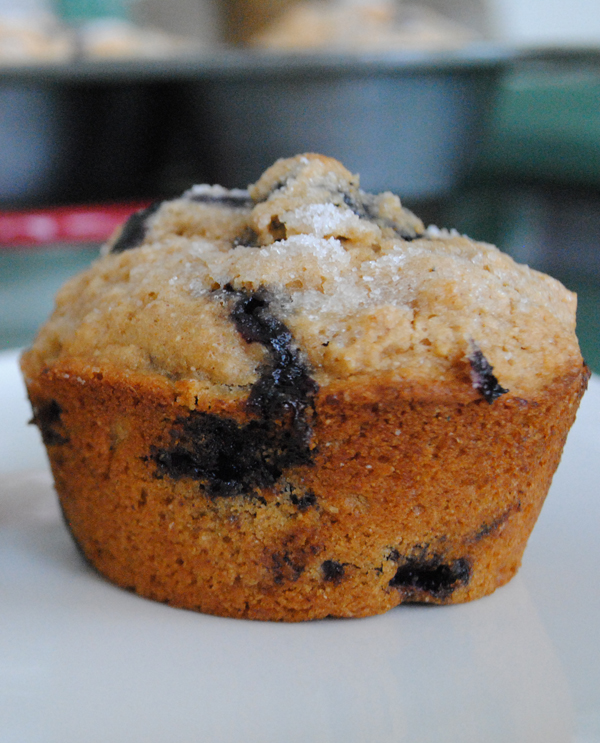 Whole Wheat Blueberry Muffins - Garlic Girl