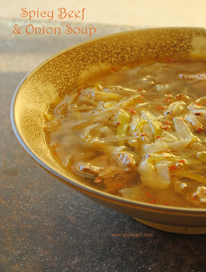 Spicy Beef and Onion Soup